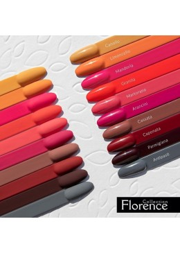 Collection FLORENCE 10 couleurs + 1 base repair clear 6ml offerte