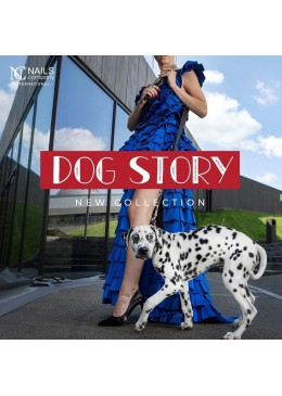 Collection DOG STORY